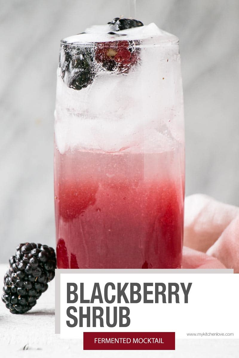 Blackberry Shrub Short Pin