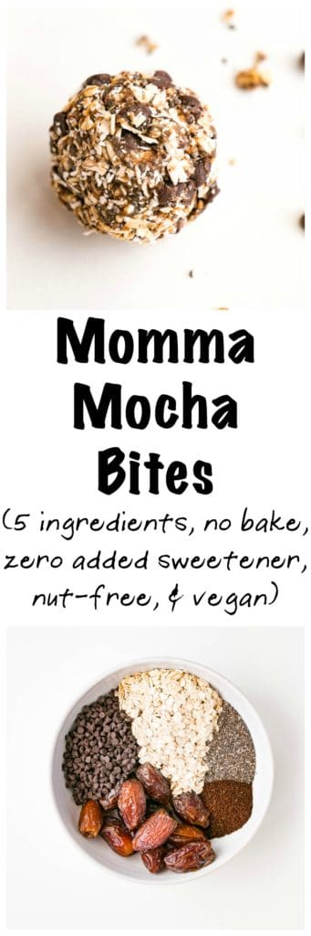 Mocha Momma Bite | My Kitchen Love