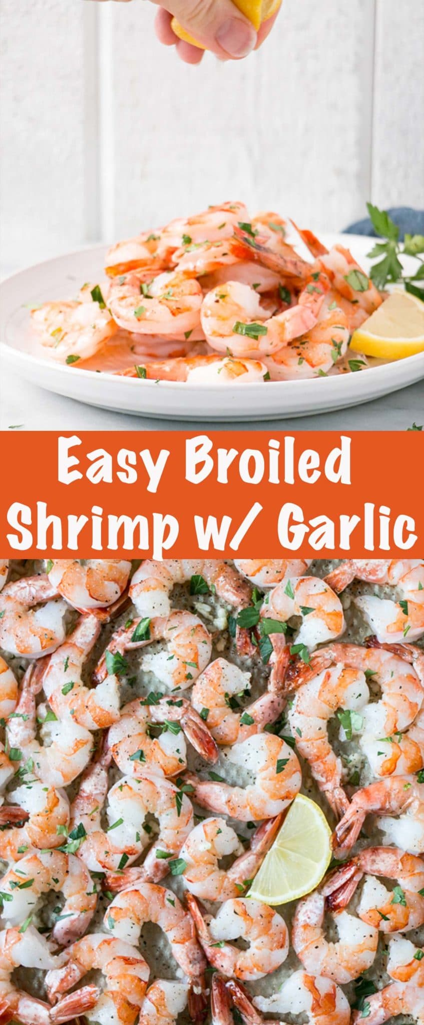 Broiled Shrimp with Garlic Long Pin